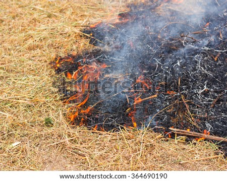 fire dried grass  - stock photo