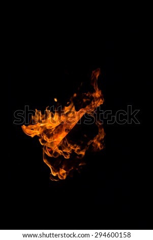 Fire flames on a black background