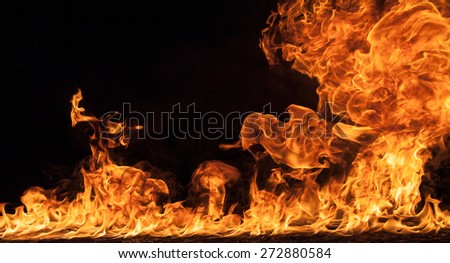 Fire flames on black background background - stock photo