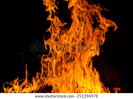 fire flames on blacks background.