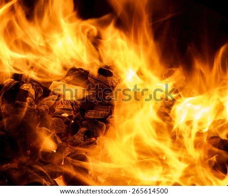Fire flames on burning coal - stock photo