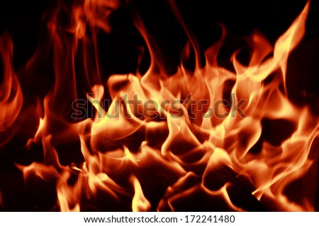 Fire flames with reflection on dark background