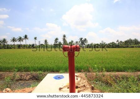 Fire hose on green fields. - stock photo