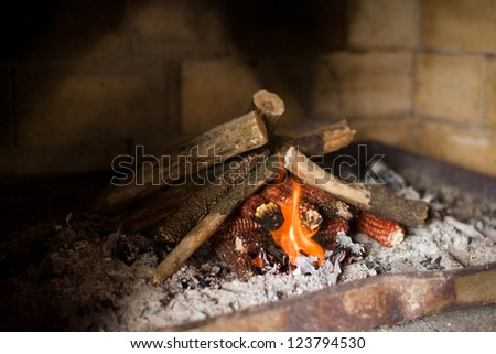 Fire in barbecue fireplace - stock photo