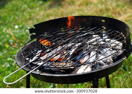 Fire in barbecue grill - stock photo