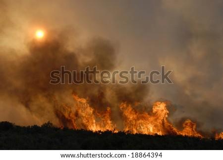Fire in forests - sun hidden - destruction - stock photo