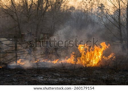 Fire in the field of agriculture - stock photo