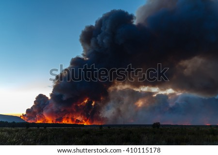Fire in the Pine forest of Tabuyo del Monte, Leon.