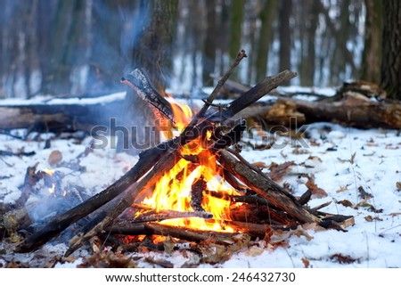 Fire In The Snowy Forest - stock photo