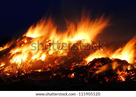 fire nature - stock photo