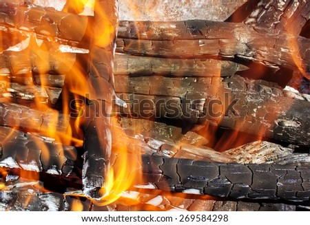 fire of wood burning bright red tongues of flame - stock photo