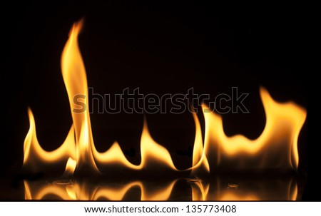 Fire on a black background. Studio shot flames - stock photo