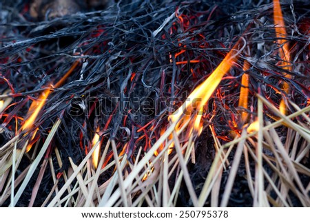 fire on straw