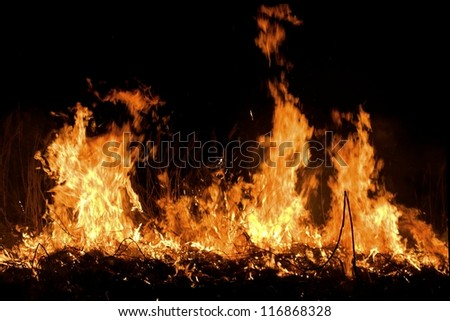 Fire on the field