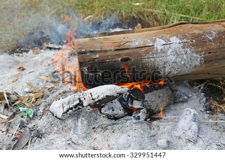 Fire on wood trunk
