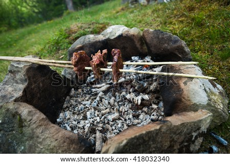 fire outdoors. Meat cooked on fire. Camping. Enjoying outdoor recreation - stock photo