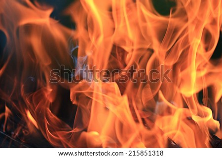 Fire texture background orange