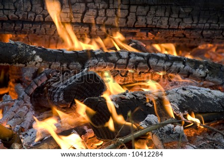 Fire with burning logs and coals