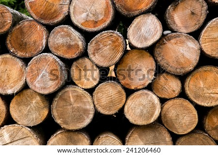 Fire wood logs. Home living, energy and winter concept - stock photo