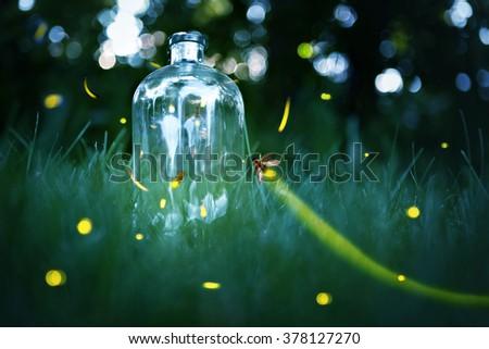 Fireflies in a jar. - stock photo