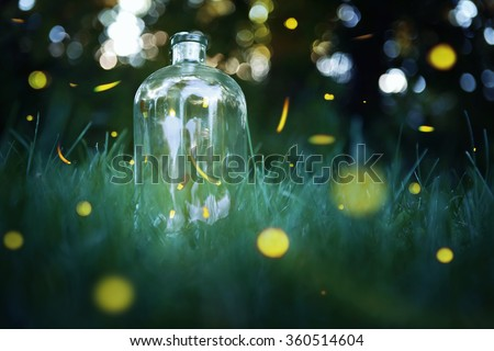 Fireflies in a jar. Long exposure of fireflies in a backyard. - stock photo