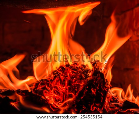 Firewood beautifully lit in the fireplace  - stock photo