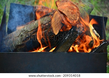 Firewood burning in fire, grill flame, campfire - stock photo