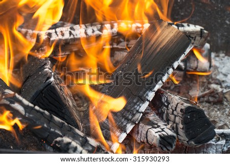 Firewood burning in fire. Selective focus.