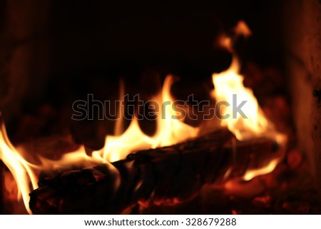 firewood burning in the furnace coals
