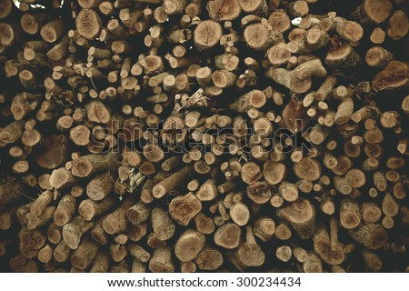 Firewood / Dry firewood in a pile for furnace kindling - stock photo