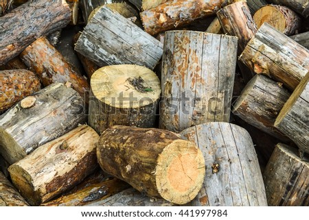 Firewood in a heap - big logs. Heap of the firewood cut on logs. Cross section of the timber, cut trees for the background. Close up cut of logs.  - stock photo