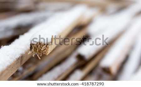 firewood in the snow in the winter - stock photo