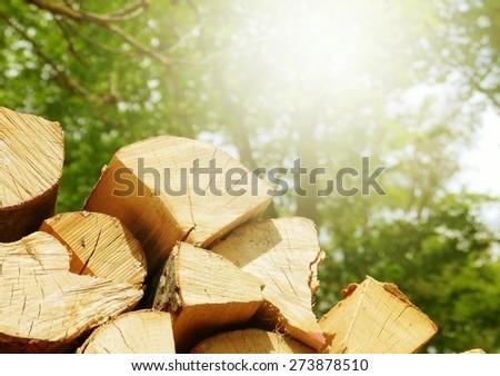 Firewood in the sun - stock photo