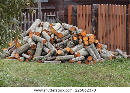 firewood. Pile of wood logs ready for winter.   - stock photo
