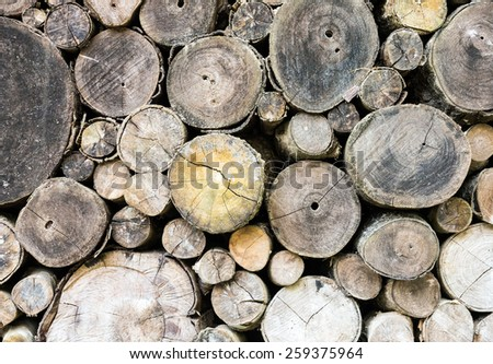 Firewood stack of the countryside house. - stock photo