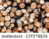 Firewood texture, after the sawing wood - stock photo