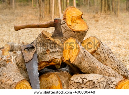 firewood with ax in stump and wood logs on ground - stock photo