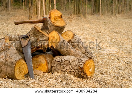 firewood with ax in stump and wood logs on ground