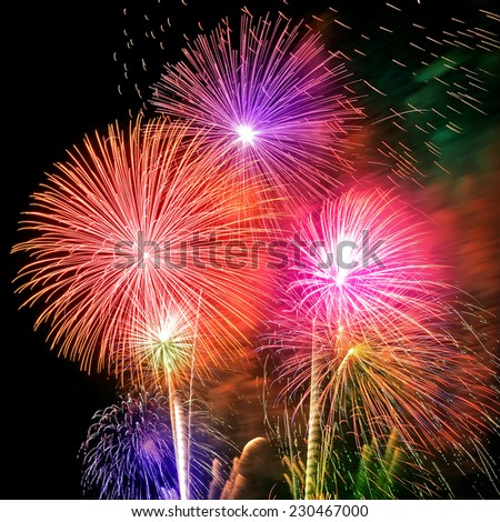 Firework Celebration. - stock photo