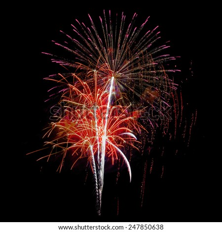 firework celebration  - stock photo
