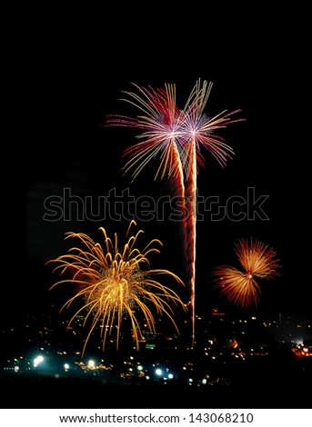 Firework in butterfly shape,tree shape and flower shape.Bloom fireworks on black background.