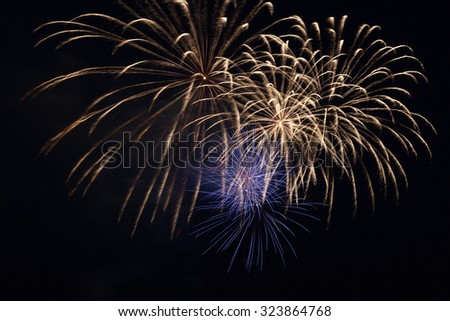 Firework in the night sky - stock photo