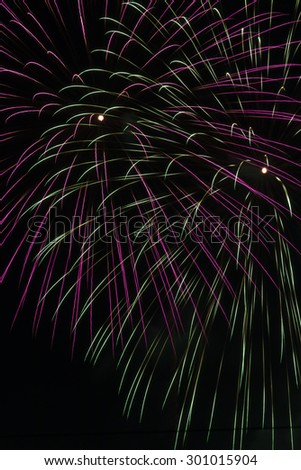 Fireworks are a beautiful flower at night. - stock photo