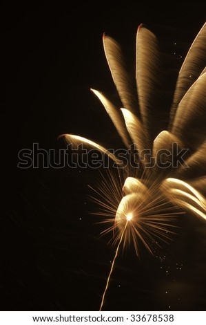 Fireworks burst with rocket trail, hot spot, and feathery motion blur