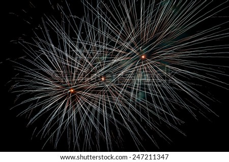 Fireworks explosion spread across the sky during the night.