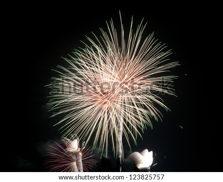 Fireworks in the new year night celebration