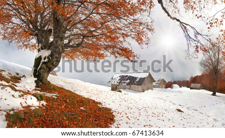 First autumn sudden snow in Carpathian mountains - stock photo