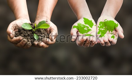 First, hands holding a young plant. Second, Painted green world map on hands. Ecology concept. - stock photo