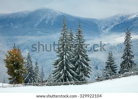 First snow in mauntain village. Ukraine - stock photo
