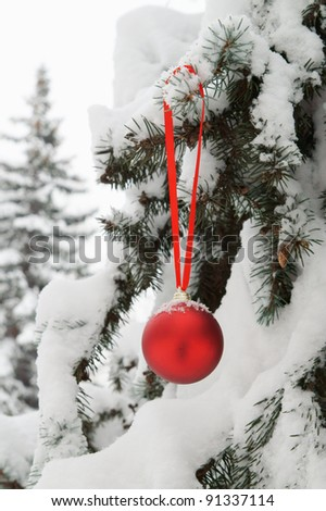 Firtree with red christmas ball and snow outdoor